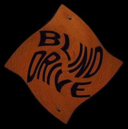 Blind5.jpg (30680 bytes)